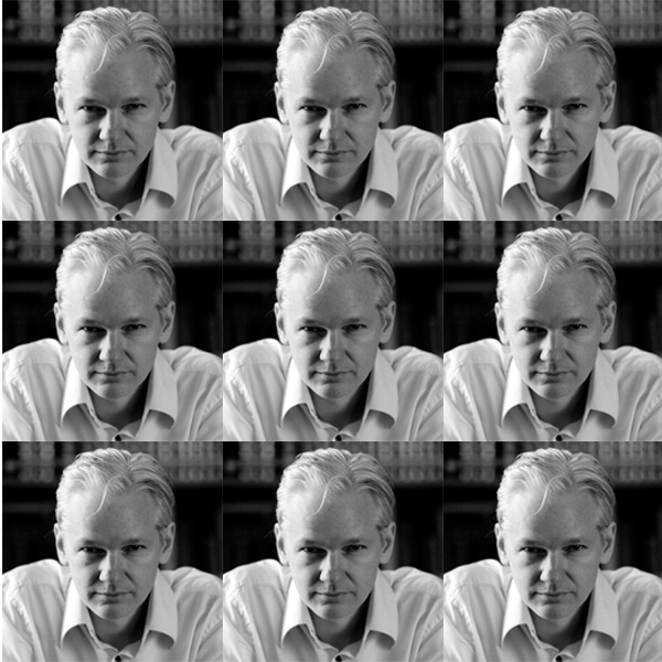 Assange_pic_2