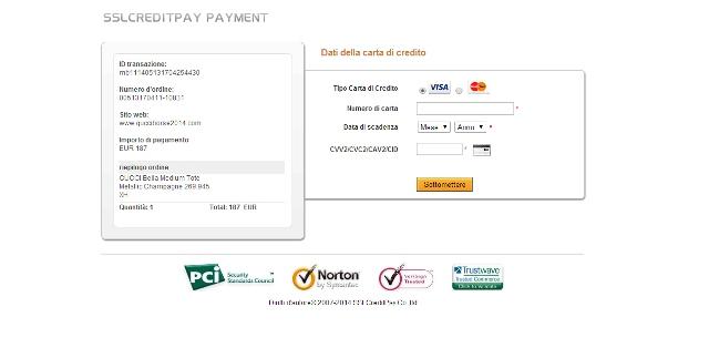 Pagina di pagamento sul sito Gucciborse2014.com
