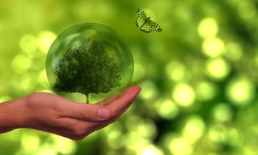 In Uk arriva il codice per arginare il greenwashing
